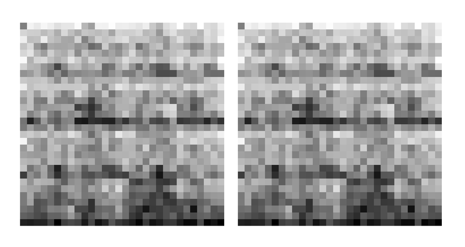 FCGR pixelated images post-dimension-reduction steps