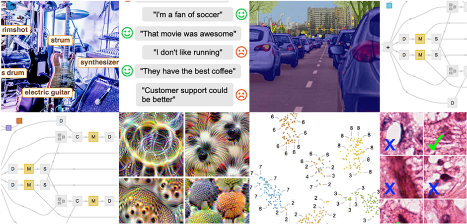 Wolfram Neural Networks Boot Camp Recap: Dog vs. Butterfly Optical Illusion Showdown