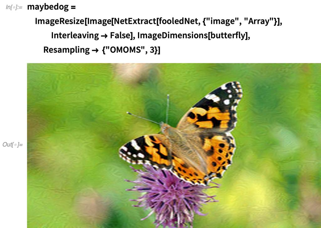maybedog =   ImageResize