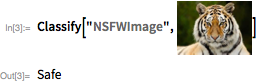 """Classify[""""NSFWImage"""", """"<image suppressed>""""]"""