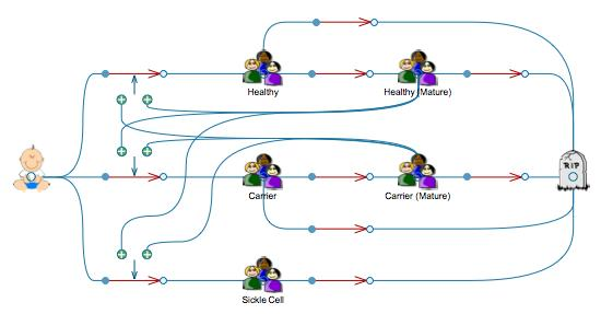System model of sickle cell anemia